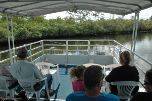 Interpretive Boat Tours on the Loxahatchee River