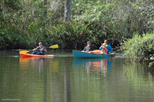 Canoeing and Kayaking in the Loxahatchee